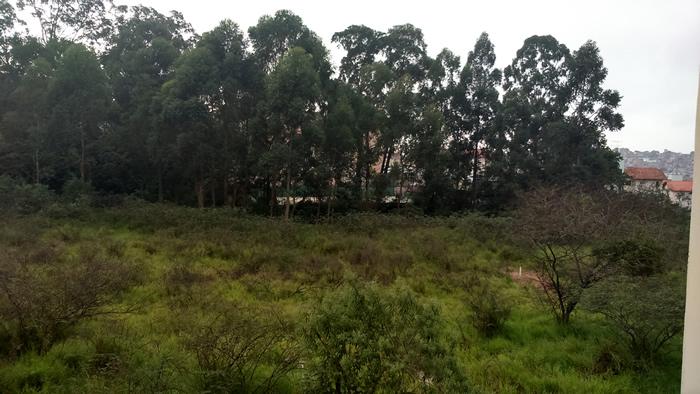 O modo paisagem do M2 faz um bom trabalho em praticamente qualquer situação.
